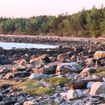 Photo: View of rocks and water at Peters Cove