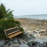 Photo: View of the rocky beach at Blue Heron
